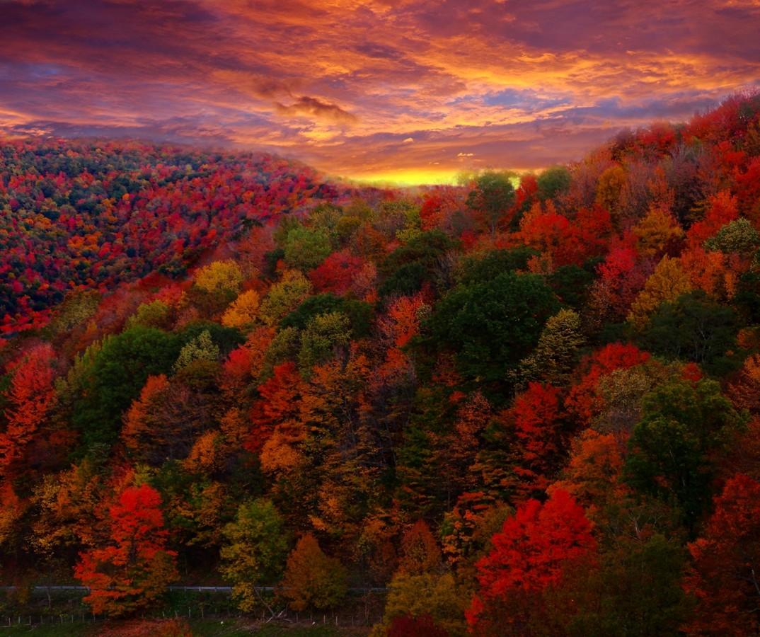 Https Www Asheville Com News 2015 10 Fall Foliage Western North Carolina 2