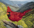Al Ramirez Cardinal Painting