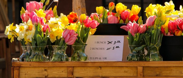 A variety of flowers on sale.